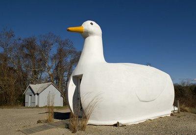 New Orleans Restaurant Duck